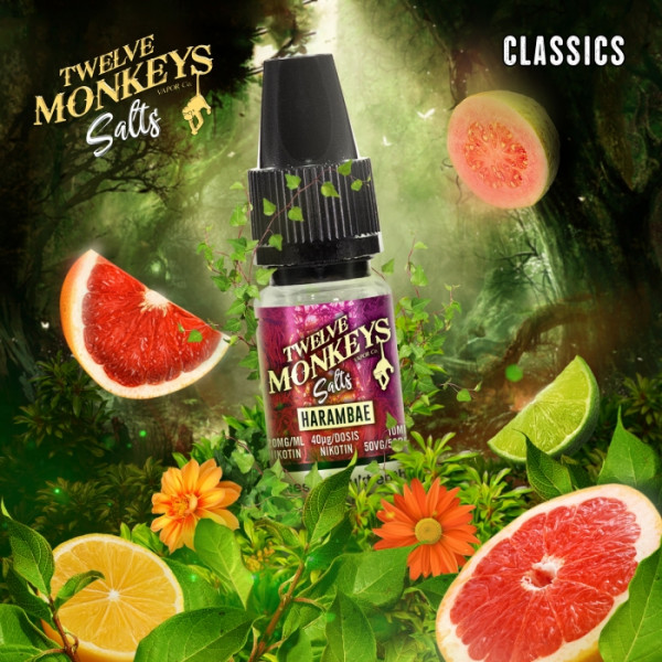 Harambae Nikotinsalz-Liquid - 12 Monkeys